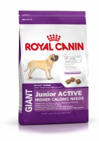 Pienso ROYAL CANIN Giant Junior Active