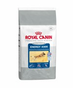 Pienso ROYAL CANIN Energy 4300