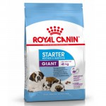 Pienso ROYAL CANIN Giant Starter