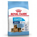 Pienso ROYAL CANIN Maxi Starter